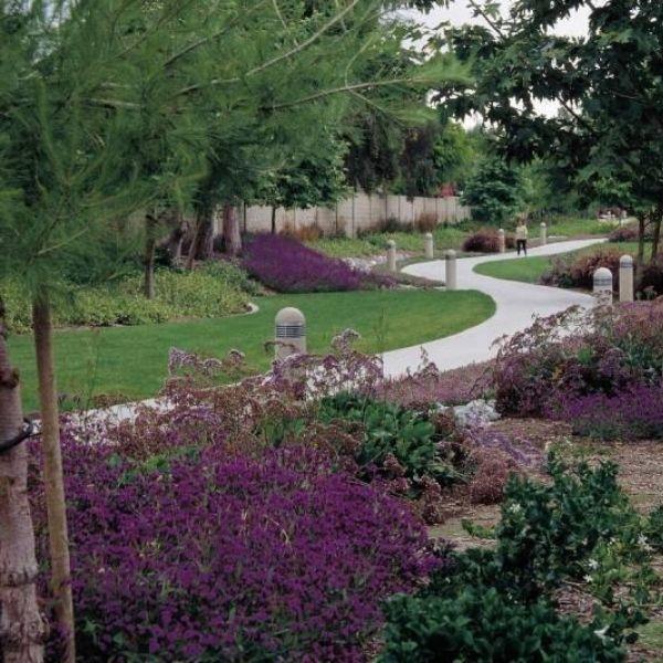 Projektovanie a realizácia okrasných záhrad